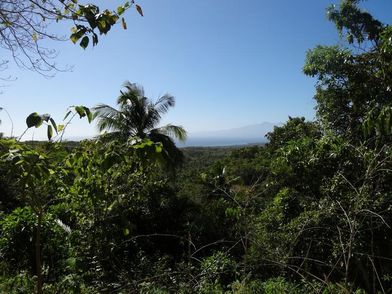PHILIPPINES : Sur les petites routes...   / 5 jours sur Siquijor & Apo Island / www.by-laura.fr