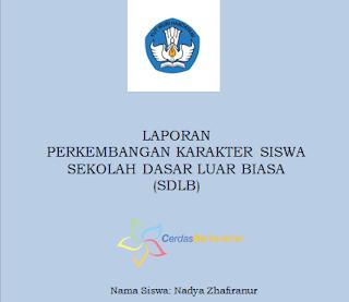 Contoh Raport Perkembangan Karakter Siswa Pendidikan Khusus (SDLB, SMPLB dan SMALB)