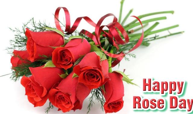 Rose Day 4