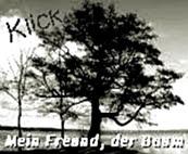 http://jahreszeitenbriefe.blogspot.de/2016/06/mein-freund-der-baum-40.html