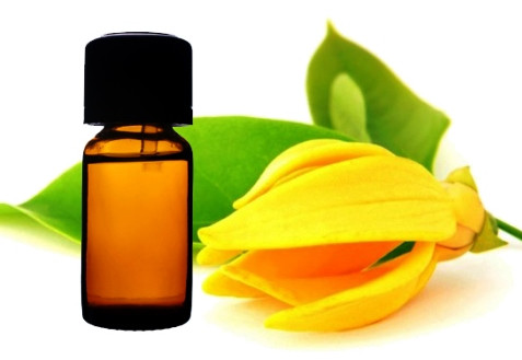 Health and Beauty Benefits Of  of Ylang Ylang Oil