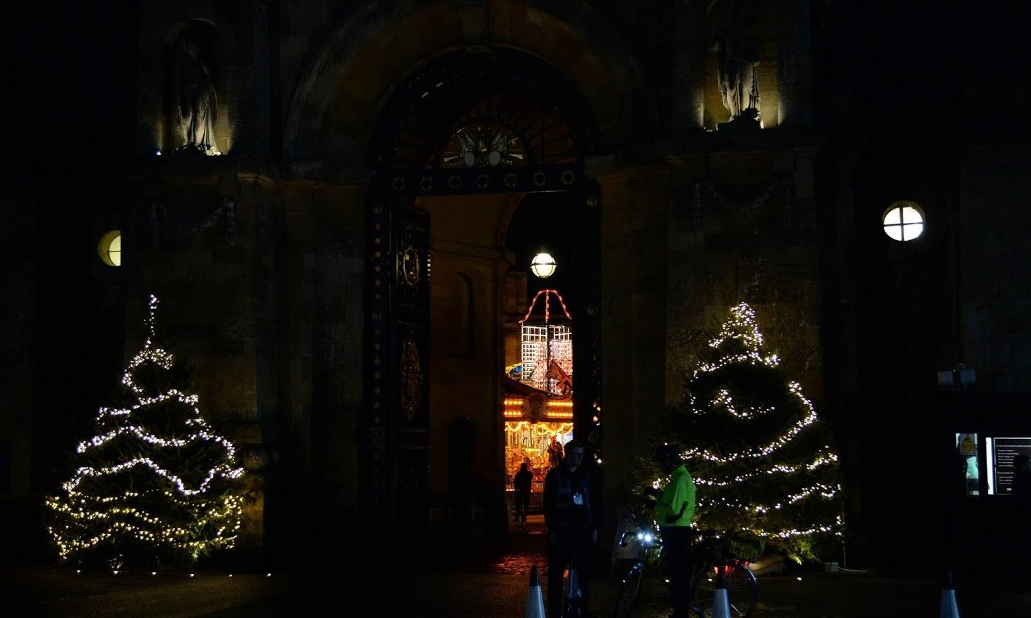 Christmas at Blenheim | Light Trail - Stephanie Silv. Lui