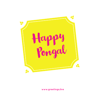 11 Happy Pongal free what's app stickers pngs