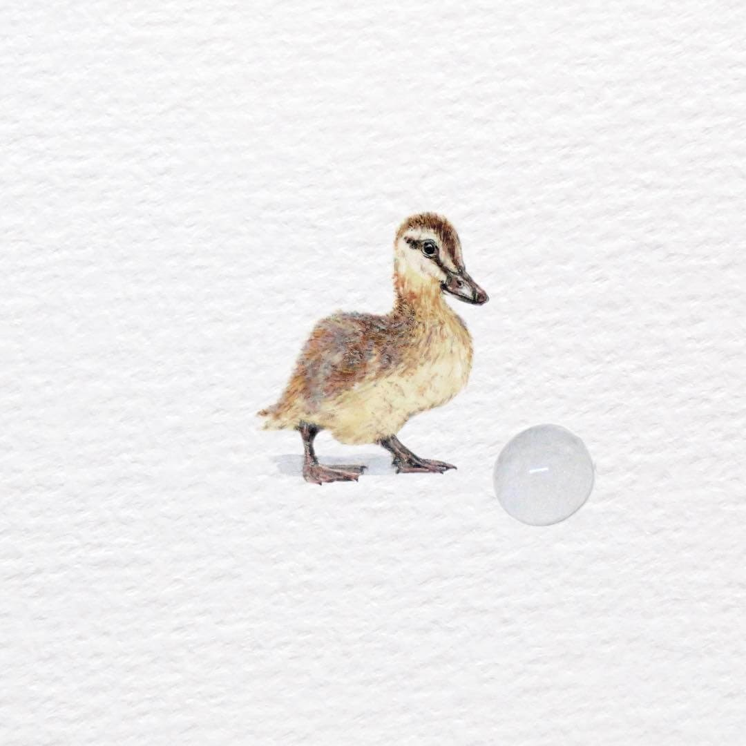 08-Duckling-Frank-Holzenburg-Animals-and-Fantasy-Creatures-Tiny-Paintings-www-designstack-co