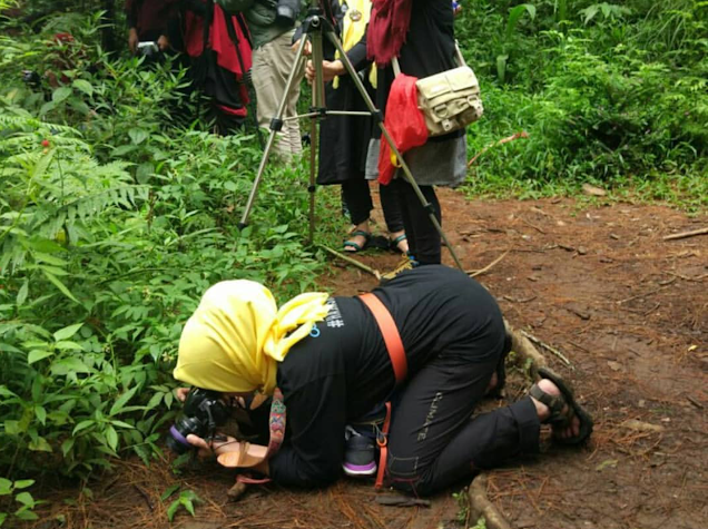 taman gunung kareumbi