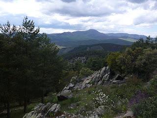 Pico Ocejón (Sierra de Ayllón)