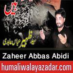 http://www.humaliwalayazadar.com/2016/10/syed-zaheer-abbas-abidi-nohay-2017.html