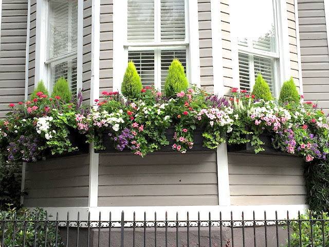 caladiums impatience small front yard curb appeal metal iron wrought fence no grass window boxes on fence easy shade light sun