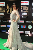 Sonal Chauhan in a stonework Floor Length Silver Designer Gown at IIFA Utsavam Awards March 2017 047.JPG