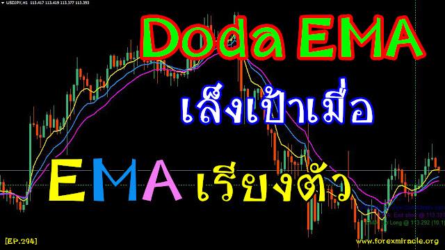 forexmiracle