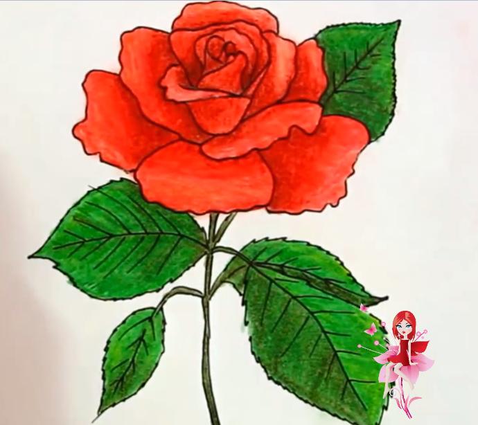 رسم وردة جميلة جداا بسهولة (سلسلة رسومات ورود)