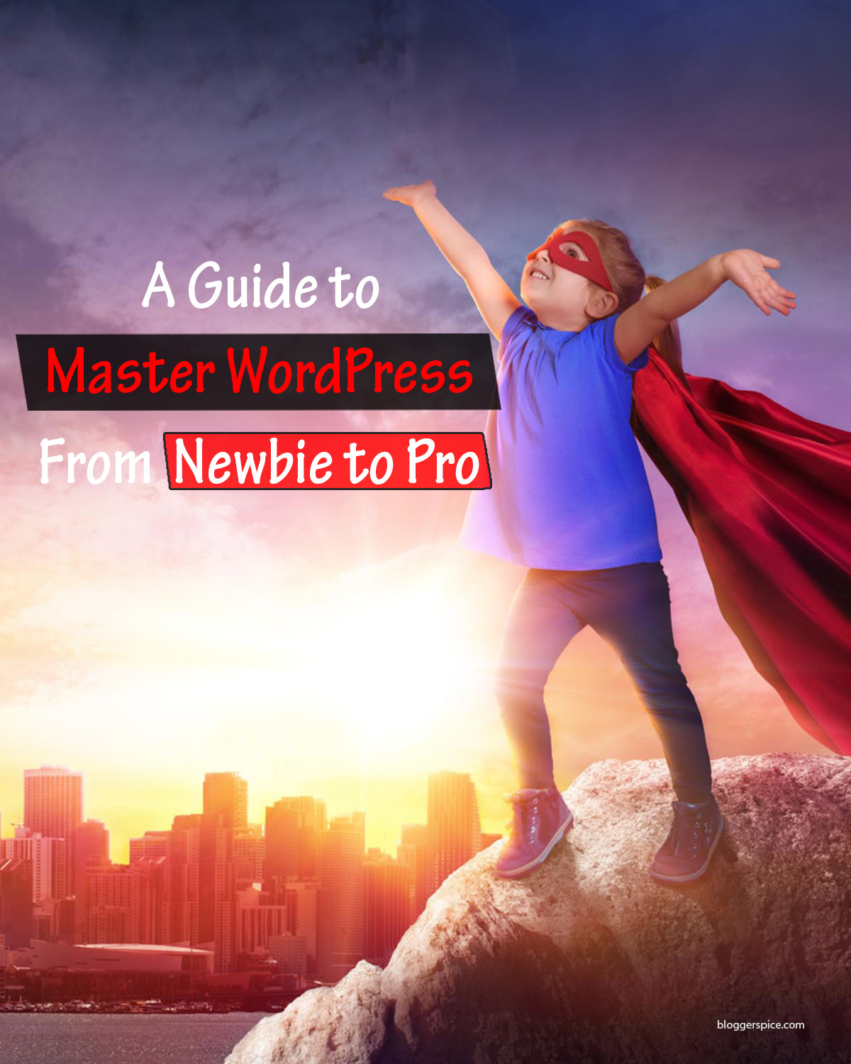 A New Guide to Master WordPress: From Newbie to Pro