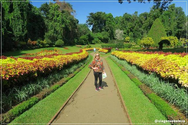 jardim botânico real em Kandy no sri lanka