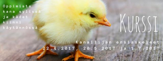 http://siltajoensirkus.blogspot.fi/2017/04/kevaan-kurssiaikatauluja.html