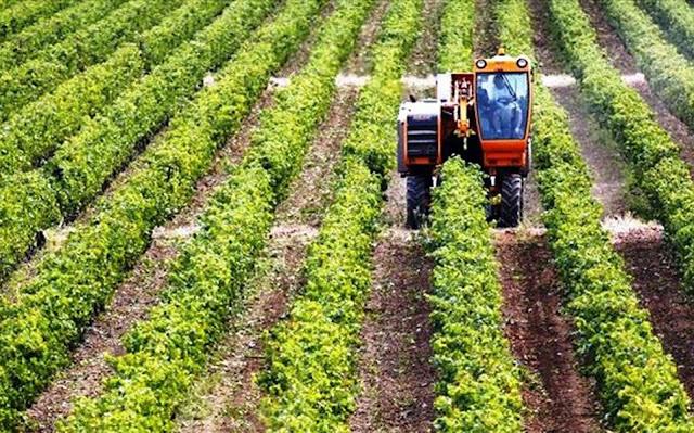 Πρέβεζα: Εκκίνηση επιχείρησης από νέους Γεωργούς στην Π.Ε. Πρέβεζας