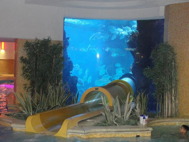 Tobo-água e aquário no Golden Nugget.