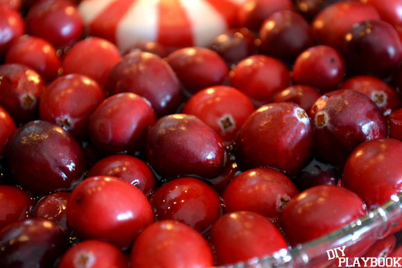 To start, throw all your fresh cranberries into a vase with water.