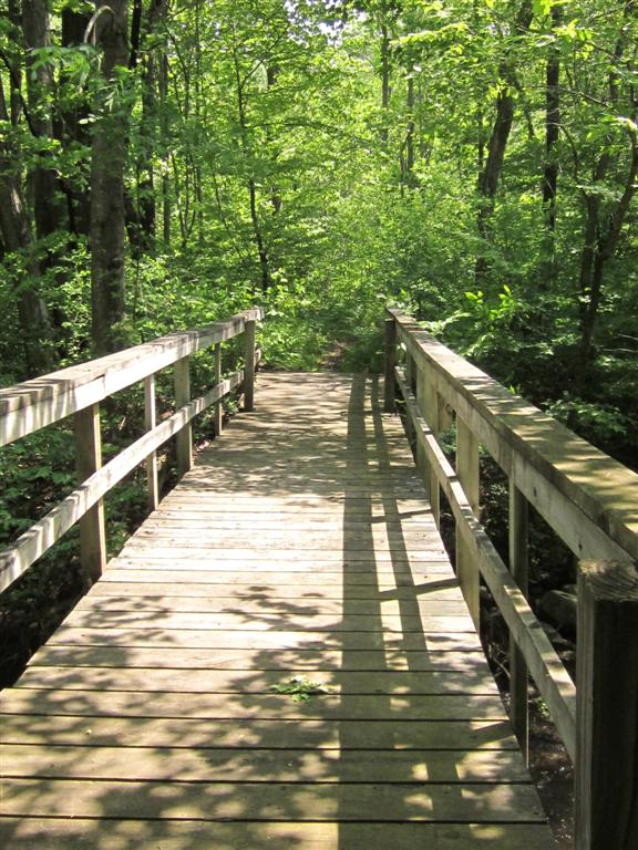 Caseys Clinton Ia >> All About Trees And Plants Gale S Pond Nature Trail And
