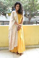 Diksha Sharma Raina Stills at ShubhalekhaLu Press Meet TollywoodBlog