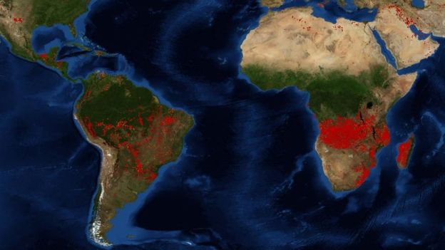 Massive Fires Are Burning Across The World, With The Largest Ones Being In Africa