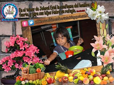 http://escuelalavozdecristo.blogspot.com/p/conozca-el-comedor-infantil-comunitario.html