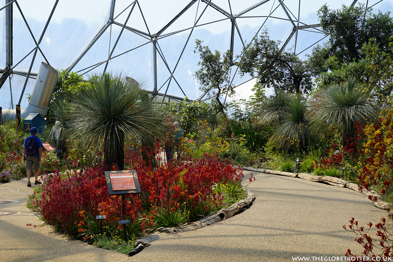 Mediterranean Biome Eden Project