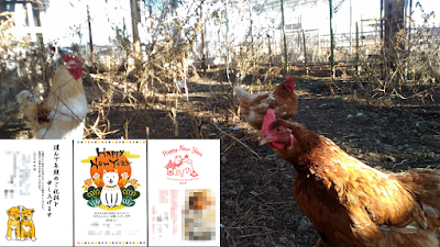 Chicken and New Dog Year postcards