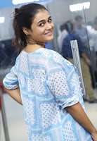 Shalini Pandey Latest Photo Stills TollywoodBlog