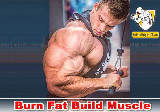 Tips On How to Burn Fat Build Muscle