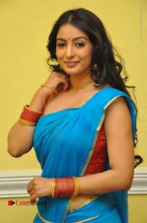 Telugu Actress Vaibhavi Stills in Blue Saree at Www.Meena Bazaar Movie Opening  0010.JPG
