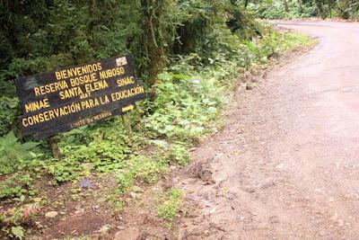 Bosque Nuboso de Santa Elena en Monteverde