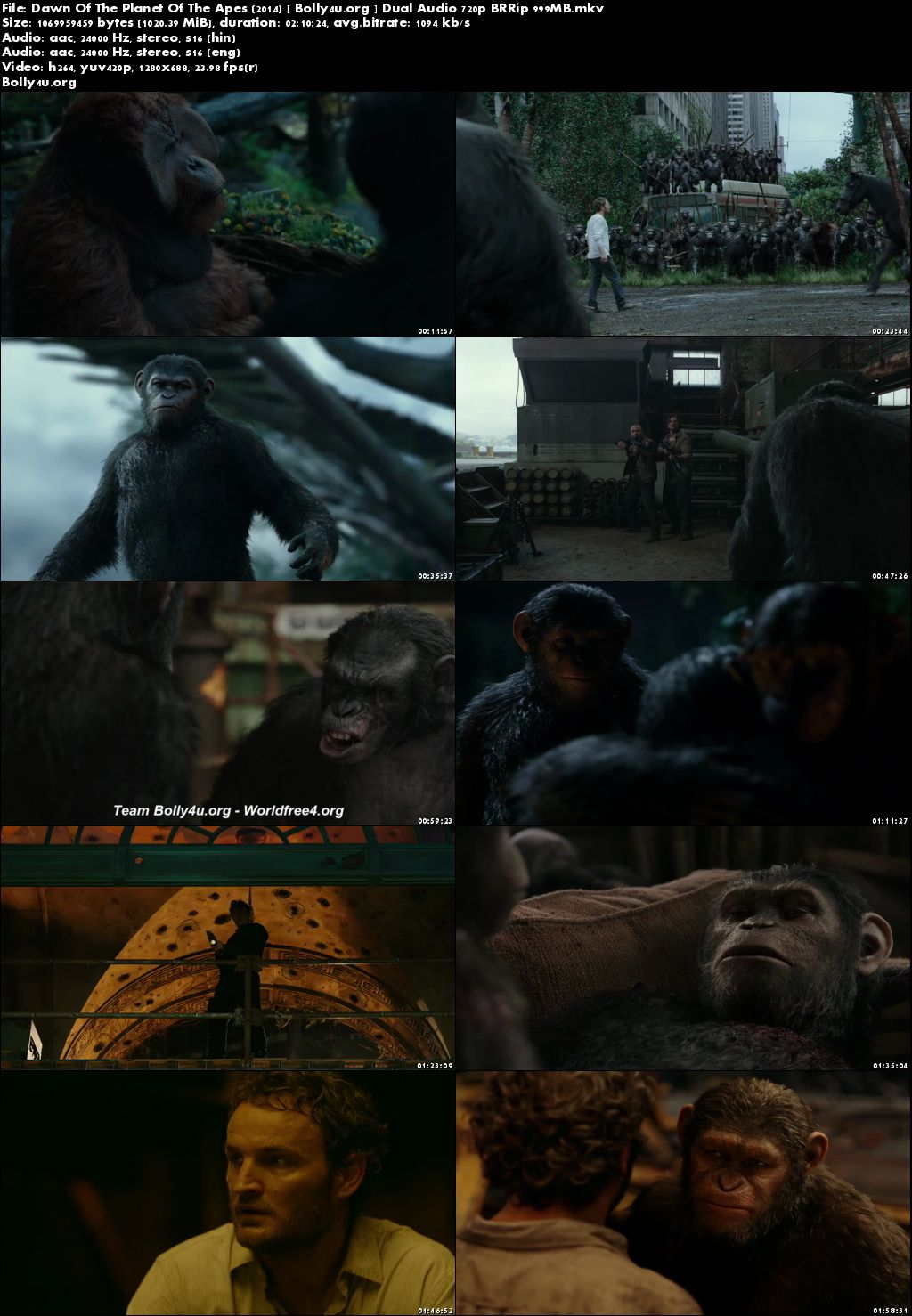 Dawn Of The Planet Of The Apes 2014 BRRip 999MB Hindi Dual Audio 720p Download