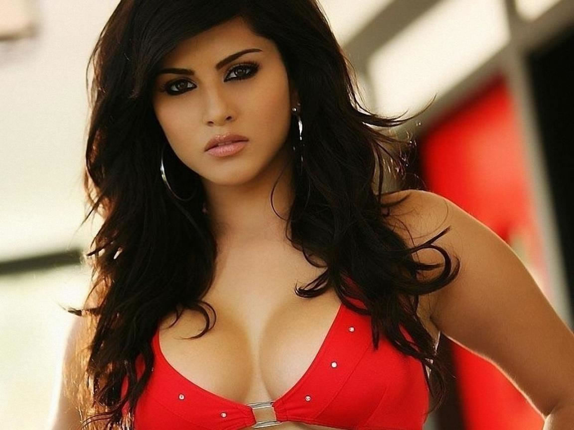 Celebrity Wallpapers Sunny Leone Hd Wallpapers 2013 -7547