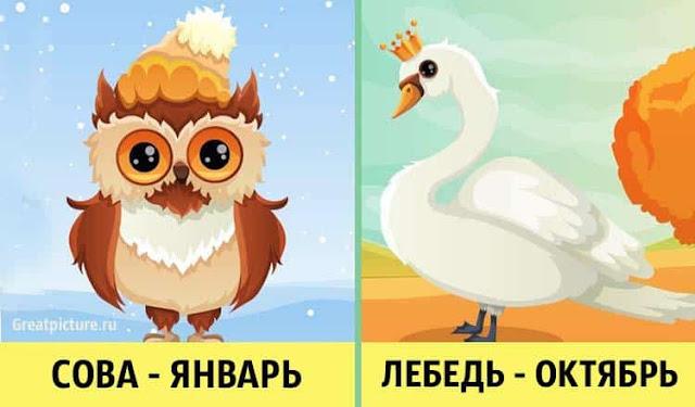 Птица-покровитель месяца рождения откроет секреты личности