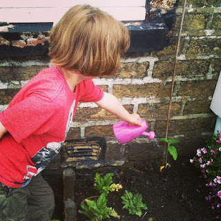gardening, growing, life on pig row, gardening with children