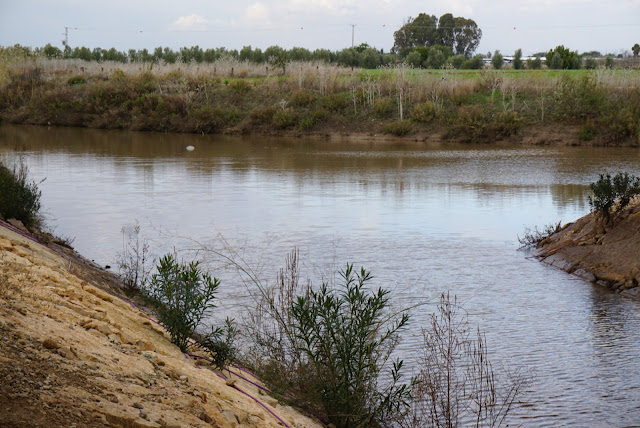 אגן מים בנחל חביבה