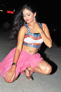 Shreya Vyas new sizzling hot pics 024.jpg