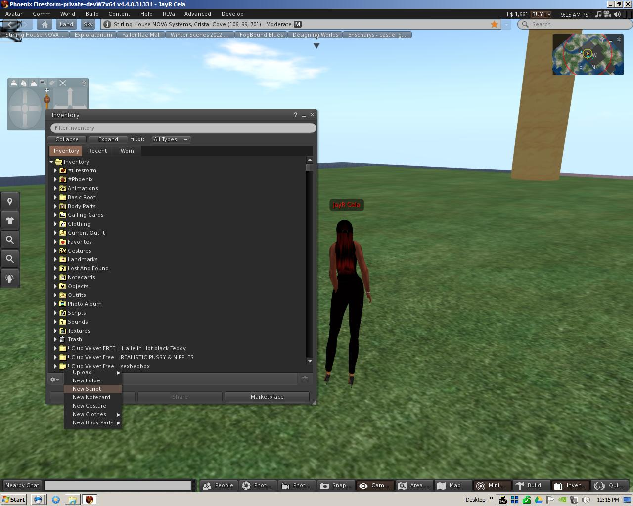 The Virtual World Technologist: SecondLife : Rolling Your
