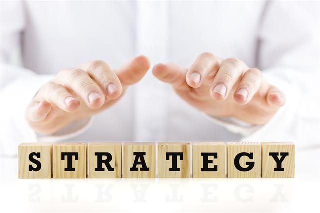البدائل الإستراتيجية - إستراتيجية النمو والتكامل والإنكماش