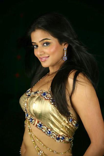 Priyamani mallu actress hot photo gallery