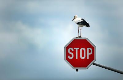 Jangan Engkau Marah
