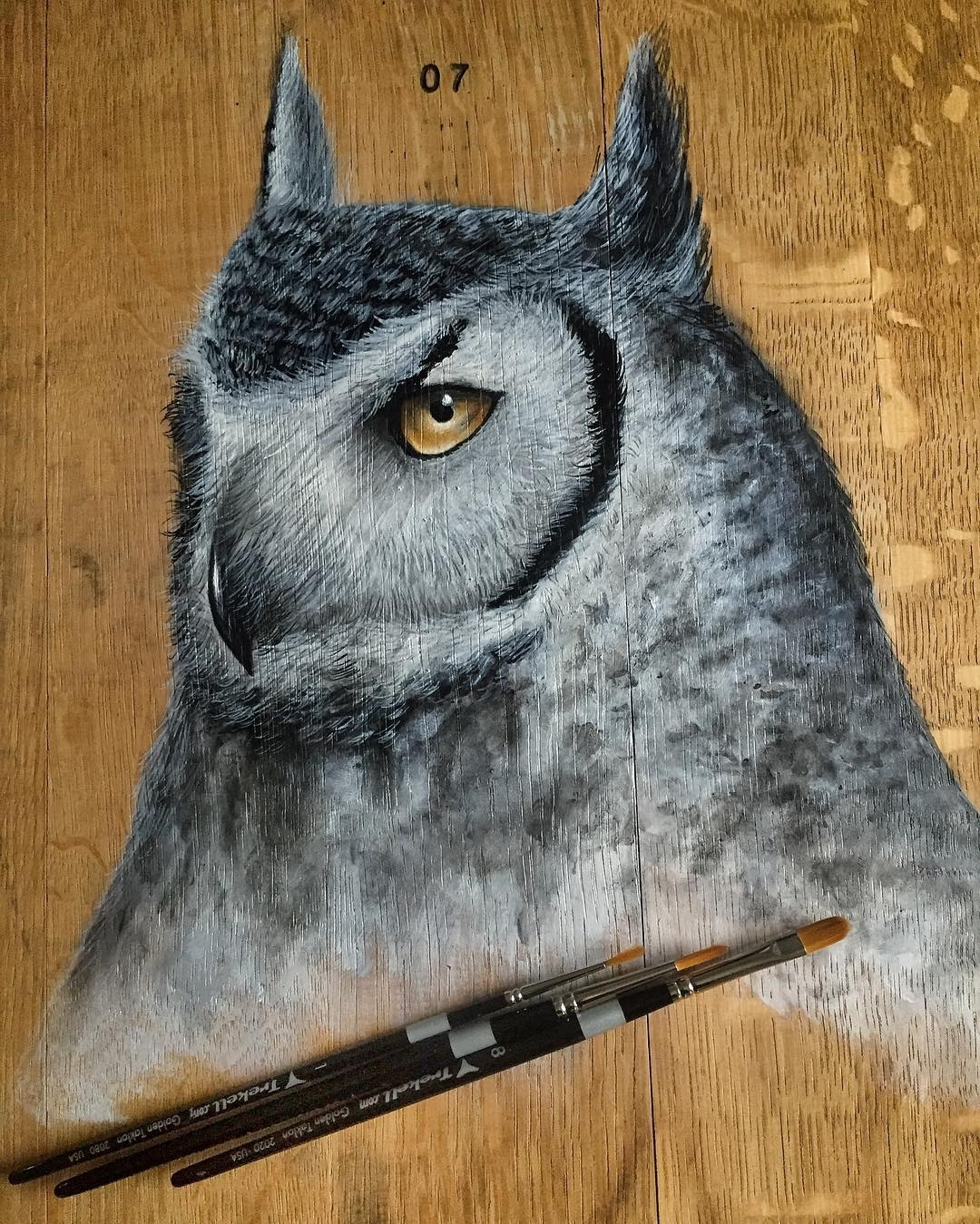 16-Horned-Owl-Jonathan-Martinez-Art-of-the-Endangered-Paintings-and-Drawings-www-designstack-co