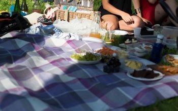 Wallpaper: Girls at picnic