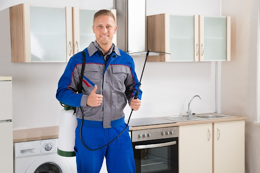 Lovely Home Accents - Home Improvement Tips: Top 5 Advantages of Hiring Emergency Plumbing Services