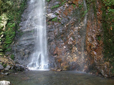 Waterfall Point, Shoja