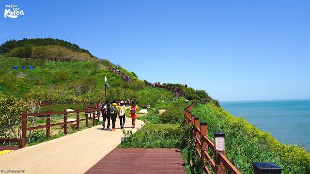 khám phá đảo Jeju