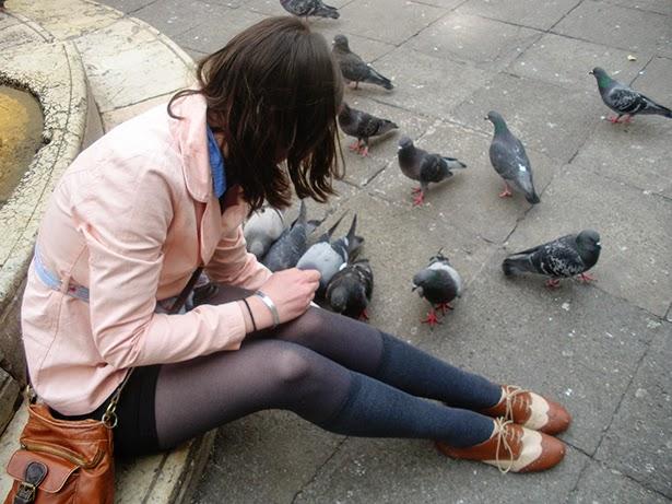 Pigeons in Venice