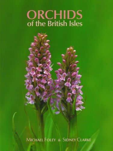 Orchids of the British Isles