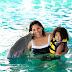 Verano Ocean World para toda la familia