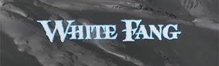 white fang-beyaz dis
